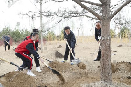 (210402) - BEIJING, April 2, 2021 (Xinhua) - Han Zheng plants a tree during a tree-planting activity in Chaoyang District in Beijing, capital of China, April 2, 2021. Chinese President Xi Jinping, also general secretary of the Communist Party of China Central Committee and chairman of the Central Military Commission, attended a tree-planting activity here on Friday. The activity was also attended by other leaders including Li Keqiang, Li Zhanshu, Wang Yang, Wang Huning, Zhao Leji, Han Zheng and Wang Qishan.