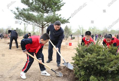Editorial picture of China Beijing Leaders Tree Planting - 02 Apr 2021