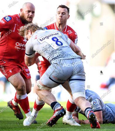 Stock Image of Scarlets vs Sale Sharks. Scarlets' Gareth Davies is tackled by Daniel du Preez of Sale Sharks
