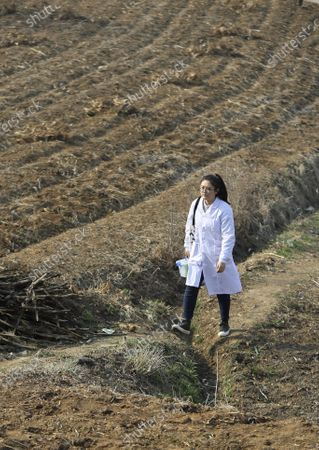 "(210407) - SHENYANG, April 7, 2021 (Xinhua) - Sun Yi walks to visit a patient at Qianyang Village, Donggang City of northeast China's Liaoning Province, April 6, 2021.   Sun Yi, born in 1997, works as a village doctor in Qianyang Village. After graduating from college majored in clinical medicine, she decided to return to her hometown and safeguard the health of the locals.    Qianyang Village has a population of over 14,000, where quite a number of people suffering from high blood pressure and diabetes. Some aged villagers are left behind by their children who work as migrant workers in other cities and cities. Sun visits these elders completed and is also responsible for data of health conditions for the villagers with spent. , she also holds health and publicicizes medical knowledge.   Sun is proud of her work. ""I grow up here and know many of the patients. I want to serve them with all I learnt and censor them a better and healthier life,"" She said."