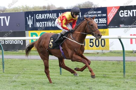 SIR RON PRIESTLEY (5) ridden by Franny Norton and trained by Mark Johnston winning the Listed Mansionbet Barry Hill Further Flight Stakes over 1m 6f at Nottingham Racecourse, Nottingham