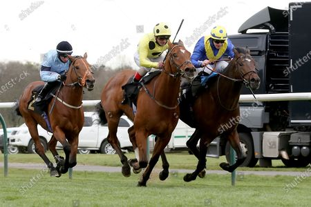 ASTRO KING (4), on the far side, ridden by Richard Kingscote and trained by Sir Michael Stoute winning the Class 3 Download The Mansionbet App Handicap over 1mat Nottingham Racecourse, Nottingham