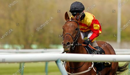 Stock Picture of SIR RON PRIESTLEY (Franny Norton) wins The Mansionbet Barry Hill Further Flight Stakes Nottingham