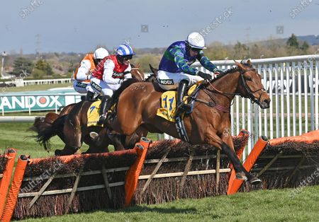Thyme Hill (Tom O'Brien) takes the last before going on to win The Ryanair Stayers Hurdle Race.Photo © Hugh Routledge.