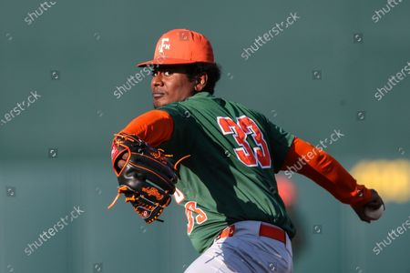 Florida A&M pitcher Khalil Wilson (33) during an NCAA baseball game against Florida on in Gainesville, Fla