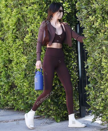 Stock Picture of Kendall Jenner in West Hollywood