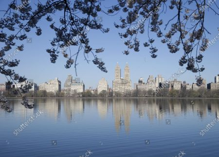Cherry Blossom trees in bloom surround Jacqueline Kennedy Onassis Reservoir in Central Park in New York City on Thursday, April 8, 2021.