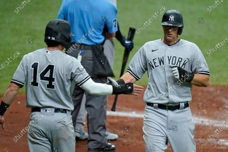 Stock Picture of New York Yankees' DJ LeMahieu, right, and Tyler Wade celebrate after scoring on a two-run single by Giancarlo Stanton off Tampa Bay Rays starting pitcher Rich Hill during the third inning of a baseball game, in St. Petersburg, Fla