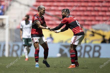 Stock Image of Gabriel Barbosa of Flamengo celebrates his goal in the 23rd minute for 1-1 with Giorgian De Arrascaeta; Mane Garrincha Stadium, Brasilia, Brazil; Supercopa do Brazil Final, Flamengo versus Palmeiras.