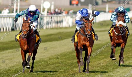 Stock Photo of THYME HILL (left, Tom O'Brien) beats ROKSANA (centre) in The Ryanair Stayers Hurdle Aintree