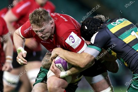 Northampton Saints vs Ulster. Ulster's Kieran Treadwell is tackled by Teimana Harrison and Piers Francis of the Northampton Saints