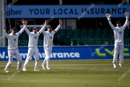 Joe Weatherley,James Vince, Liam Dawson and Lewis McManus of Hampshire appeal for the wicket of Gavin Griffiths