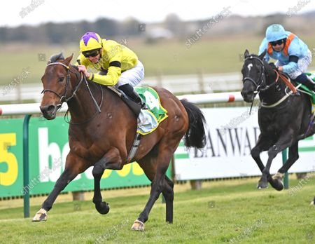 (L) My Oberon (James Doyle) winning The bet365 Earl of Sefton Stakes from (R) Maries Diamond (Silvestre De Sousa).Photo © Hugh Routledge.