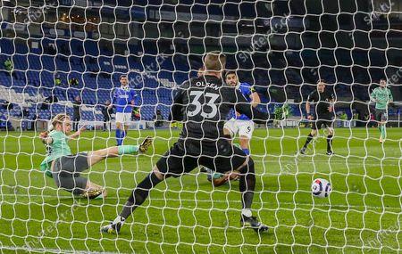 Editorial image of Brighton and Hove Albion v Everton, Premier League - 12 Apr 2021