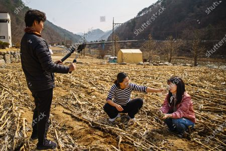 Seok Hyeon Ju, middle, and Sim Ha Yoon, right, find plants they can harvest for food and while Kim Mi Ran, left, documents for YouTube, in Inje, South Korea, Monday March 9, 2020. Seok Hyeon Ju is part of a burgeoning niche of YouTubers N North Korean refugees telling their own stories of escape, survival and resettling in a capitalist land. What had been a couple dozen North Korean YouTubers has surged to more than 150 during the COVID-19 pandemic, when opportunities for speeches, performances and lectures for the refugees has dried up. Many of them young, tech-savvy and attractive, they are changing the image South Koreans have of the 33,000-some North Korean escapees now living among them. (Marcus Yam / Los Angeles Times)