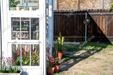 Editorial photo of Trevor Morris and Jenny Grosso built a greenhouse and social gathering area from unwanted windows during Covid-19, Atwater Village, Los Angeles, California, United States - 18 Mar 2021