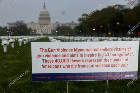 The Gun Violence Memorial, an installation on the National Mall sponsored by Former U.S. Representative Gabrielle Giffords, is seen on April 14, 2021. The 40,000 flowers placed on the National Mall represent the number of Americans who die annually from gun violence. Signs surrounding the installation break down the fatalities by state and provide additional information about gun violence.