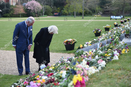 Editorial image of Prince Charles and Camilla Duchess of Cornwall visit the gardens of Marlborough House, London, UK - 15 Apr 2021