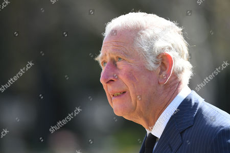 Stock Photo of Prince Charles visits the gardens of Marlborough House, London, to view the flowers and messages left by members of the public outside Buckingham Palace following the death of the Duke of Edinburgh on April 10.