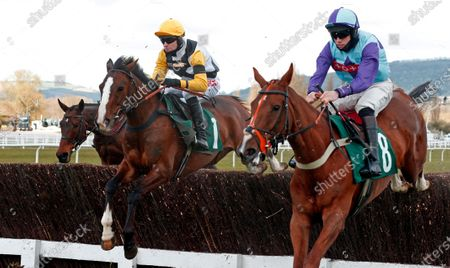 Stock Photo of WIN MY WINGS (left, Nick Scholfield) wins The Catesby Estates PLC Mares Handicap Chase Cheltenham