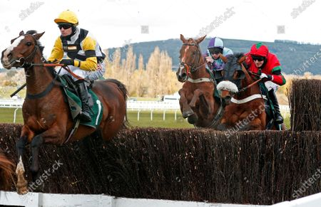 WIN MY WINGS (Nick Scholfield) wins The Catesby Estates PLC Mares Handcap Chase Cheltenham