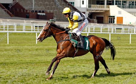 Stock Picture of WIN MY WINGS (Nick Scholfield) wins The Catesby Estates PLC Mares Handicap Chase Cheltenham