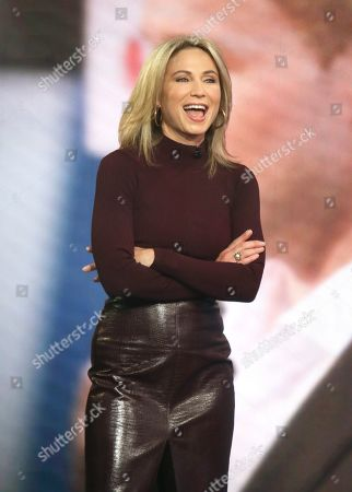 Stock Picture of Amy Robach