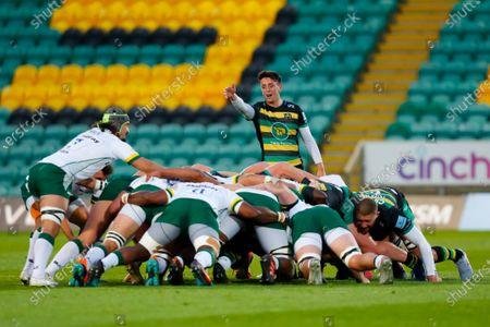 Alex Mitchell of Northampton Saints appeals for a penalty at a scrum; Franklin's Gardens, Northampton, East Midlands, England; Premiership Rugby Union, Northampton Saints versus London Irish.