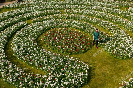 Arundel tulip festival, Arundel Castle