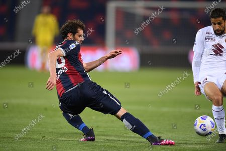 "Andrea Poli (Bologna)Ricardo Rodriguez (Torino)        during the Italian ""Serie A"" match between Bologna 1-1 Torino  at  Renato Dall Ara Stadium in Bologna , Italy."