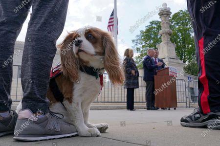 Beau, attends a news conference with Sen. Marsha Blackburn, R-Tenn., Sen. Lindsey Graham, R-S.C., and Sen. Ted Cruz, R-Texas, outside the Supreme Court in Washington