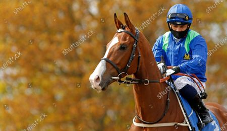 DANCING KING (Silvestre de Sousa) winner of The Bet At Racing TV Handicap Leicester