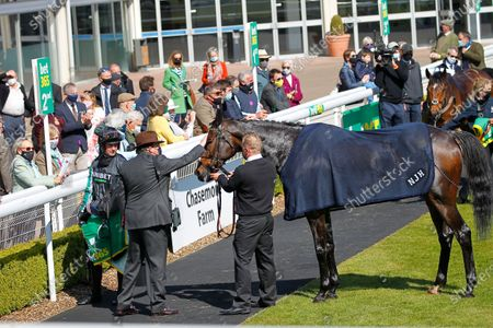 Stock Image of Nicky Henderson gives Altior a pat after a gallant second in the Bet365 Celebration Chase at Sandown.