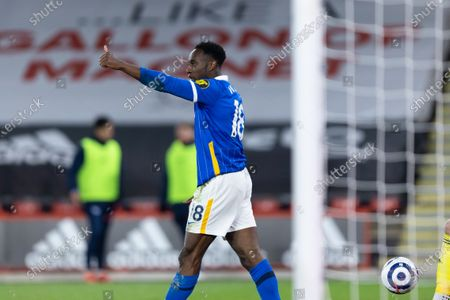 Danny Welbeck of Brighton and Hove Albion gives a thumbs up during the Premier League match between Sheffield United and Brighton and Hove Albion at Bramall Lane, Sheffield on 24th April 2021.