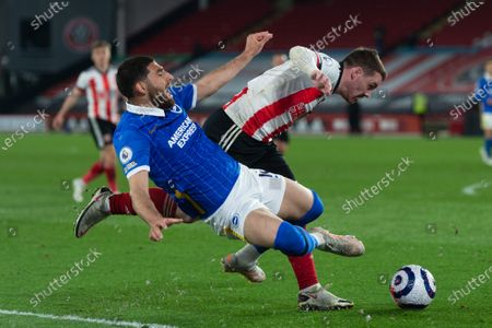 Stock Image of Alireza Jahanbakhsh of Brighton and Hove Albion goes down in the box during the Premier League match between Sheffield United and Brighton and Hove Albion at Bramall Lane, Sheffield on 24th April 2021.