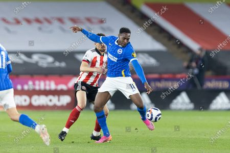 Danny Welbeck of Brighton and Hove Albion on the ball during the Premier League match between Sheffield United and Brighton and Hove Albion at Bramall Lane, Sheffield on 24th April 2021.