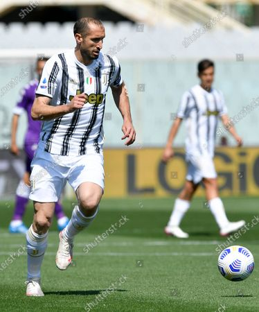 Stock Picture of Giorgio Chiellini of Juventus FC during the Serie A match between ACF Fiorentina and FC Juventus at Stadio Artemio Franchi, Florence, Italy on 25 April 2021.