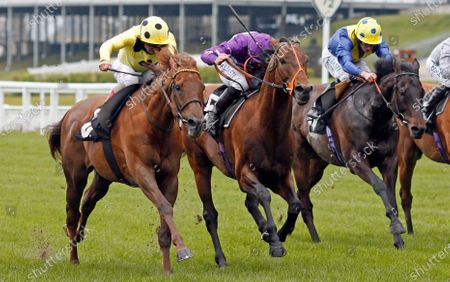 Stock Picture of OH THIS IS US (centre, Tom Marquand) beats PRINCE EIJI (left) and SOLID STONE (right) in The Charlie Waller Trust Paradise StakesAscot 28 Apr 2021 - Pic Steven Cargill