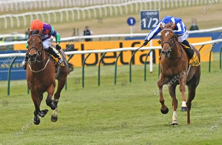 (L) Lady Bowthorpe (Kieran Shoemark) wins The Betfair Dahlia Stakes from (R) Queen Power (Silvestre De Sousa).