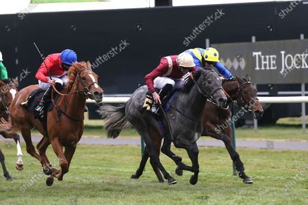 Stock Image of ROMAN MIST (5) ridden by James Doyle and trained by Tom Ward winning The Follow @racingtv On Twitter Fillies Handicap over 1m during the meeting at Nottingham Racecourse, Nottingham