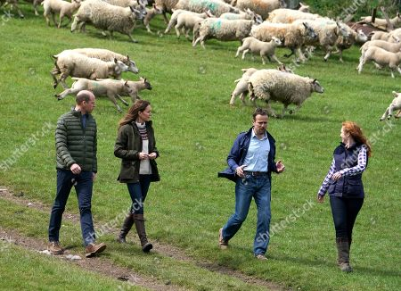 Prince William and Catherine Duchess of Cambridge (left) walk with farmers Stewart Chapman and his wife Clare Wise, during their visit to Manor Farm in Little Stainton, Durham.