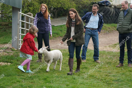 Catherine Duchess of Cambridge and farmer's daughter Clover Chapman, 9, walk a lamb together, watched by her parents and Prince William, during a royal visit to Manor Farm in Little Stainton, Durham.