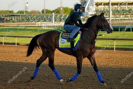 Stock Picture of Kentucky Derby hopeful Hozier works out at Churchill Downs, in Louisville, Ky. The 147th running of the Kentucky Derby is scheduled for Saturday, May 1