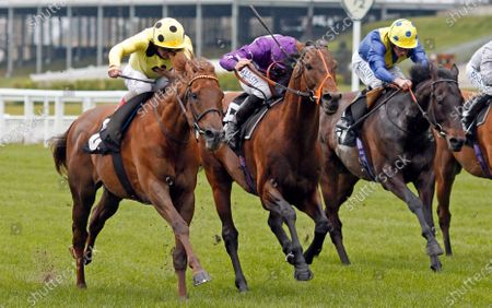 OH THIS IS US (centre, Tom Marquand) beats PRINCE EIJI (left) and SOLID STONE (right) in The Charlie Waller Trust Paradise Stakes Ascot