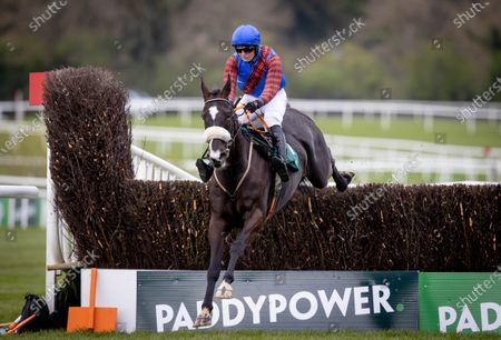 The Paddy Power Hunters Steeplechase for the Bishopscourt Cup. Tom Hamilton on Rewritetherules wins