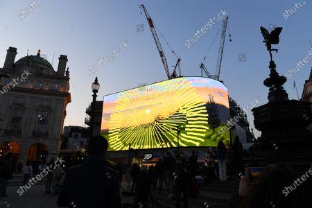 People enjoy the David Hockney art installation
