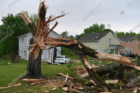 Downed tree and damaged homes are seen along Elvis Presley Drive in Tupelo, Miss., . Multiple tornadoes were reported across Mississippi on Sunday, causing some damage but no immediate word of injuries