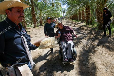 Alvaro Bautista, left, holding medjool male date palm flower, with father Enrique Bautista, in wheelchair, with two sisters Maricela Bautista, left, and Alicia Gonzalez at family farm Bautista Family Organic Date Farm on Thursday, April 8, 2021 in Mecca, CA.(Irfan Khan / Los Angeles Times)