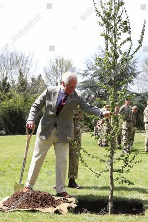 Prince Charles helps plant a tree next to Commanding Officer, Lieutenant Colonel Henry Llewelyn-Usher as he visits members of the Welsh Guards at Combermere Barracks