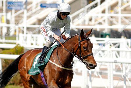 DUBAI FOUNTAIN (Franny Norton) winner of The Weatherbys ePassport Cheshire Oaks Chester